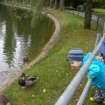 im Park (2)